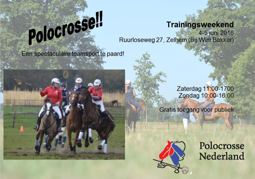 Flyer zelhem