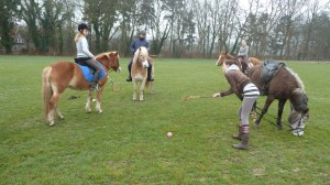 Training op de Wei
